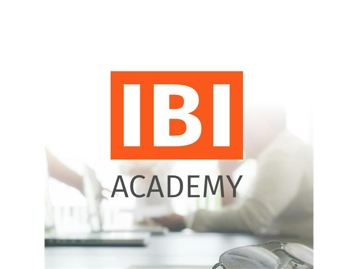 IBI - Internet Business Innovation. IBI Academy